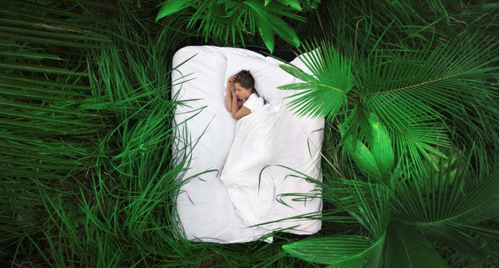 Why Owning An Eco Friendly Mattress Is Important For 2021